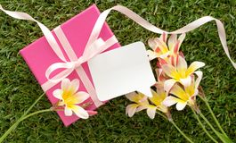 Pink gift box with a bow, blank note for text. And flowers, on green grass Stock Image