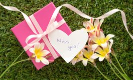 Pink gift box with a bow, `Miss you`. Text and flowers, on green grass Royalty Free Stock Photography