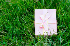 Pink gift box on green grass outdoor. Royalty Free Stock Photo