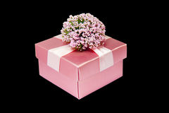 Pink gift box isolated Royalty Free Stock Photography
