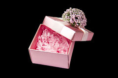 Pink gift box opened isolated Royalty Free Stock Photo