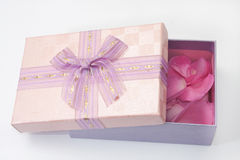 Pink gift box with pink rose petals Royalty Free Stock Photo