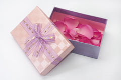Pink gift box with pink rose petals Stock Photography