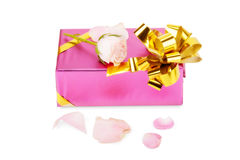 Pink gift box with rose flower isolated on white Royalty Free Stock Image