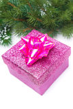 Pink gift box and spruce branches, isolated Royalty Free Stock Photography