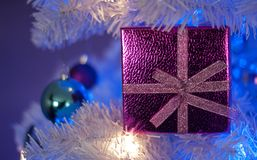 Pink gift box in white christmas tree with white light, blue light, teal ornament, purple ornament, white ornament. Pink gift box in white christmas tree with royalty free stock image