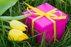 Pink gift box and yellow tulips Stock Photos
