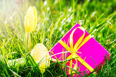 Pink gift with easter egg and yellow tulip Stock Image
