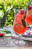 Pink gin and tonic cocktail Stock Images