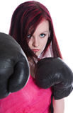 Pink girl boxer Stock Photography