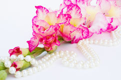 Pink gladiolus is on white background. Pink gladiolus and pearl are on white background Royalty Free Stock Photo