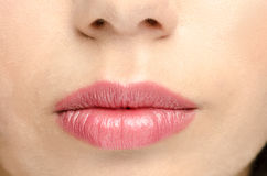 Pink gloss lips Stock Image