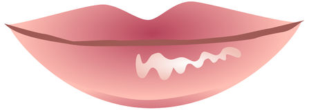Pink glossy lips Stock Photography
