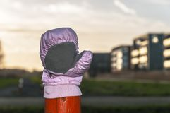 A pink glove on top of a wooden pole. A pink glove placed on an orange wooden pole Stock Images