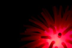 Pink Glow. Photograph of a glowing toy, placed on a flat surface Royalty Free Stock Photo