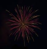 Pink-Gold Fireworks Stock Photos