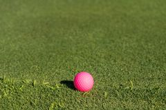 Pink golf ball on the edge of putting green royalty free stock photos
