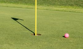 Pink golf ball by flag and hole on putting green royalty free stock photography