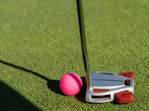 Pink golf ball and putter on the edge of putting green royalty free stock photo