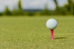 Pink Golf Tee Stock Photography
