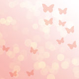 Pink gradient abstract background Stock Photography