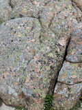 Pink granite boulders Royalty Free Stock Photo