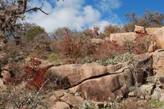 Pink granite boulders and autumn scrub in the West Royalty Free Stock Photos