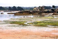 Pink granite coast Royalty Free Stock Image