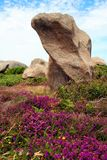 The pink granite coast , at Ploumanach,  Brittany, France Stock Image