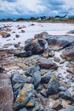 The pink granite rocks with strange shapes, coast in Brittany. T Stock Photos