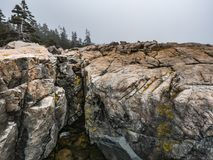 Pink Granite Shoreline with Fog, Schoodic Point. Fog drifts in over Maine`s pink granite shoreline at Schoodic Point, Schoodic Peninsula, Acadia National Park Royalty Free Stock Images