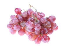 Pink grape Royalty Free Stock Images