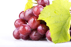 Pink grape  on white Royalty Free Stock Images