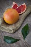 Pink grapefruit Stock Photography
