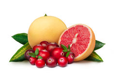 Pink grapefruit with cranberry Stock Photography