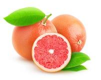 Pink grapefruits Royalty Free Stock Photo