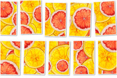 Pink grapefruits and oranges mix colorful sliced fruits  collage Royalty Free Stock Image