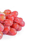 Pink grapes branch Royalty Free Stock Photo