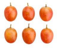 Pink grapes Stock Image