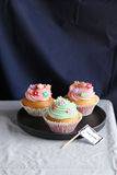 Pink and green birthday cupcakes Stock Image