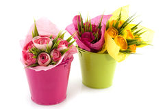 Pink and green bucket Royalty Free Stock Photography