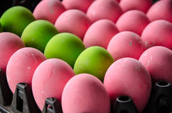 Pink and green egg Stock Photo
