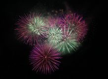 Pink and green fireworks. Awesome fireworks on the night sky Stock Photo