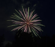 Pink-Green Fireworks Royalty Free Stock Photography