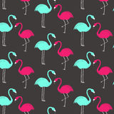 Pink and green flamingo pattern. Wallpaper design. Stock Photo