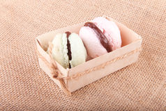 Pink and green macaroons in the box Stock Image