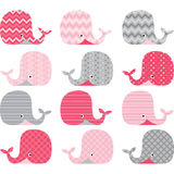 Pink and Grey Cute Whale Collections Stock Image