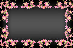 Pink ground orchid Stock Photography