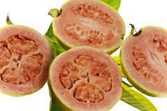 Pink Guava Fruit Royalty Free Stock Photography