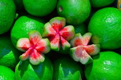 Pink guava for sale, Pune. Top view of Pink guava for sale, Pune Royalty Free Stock Image